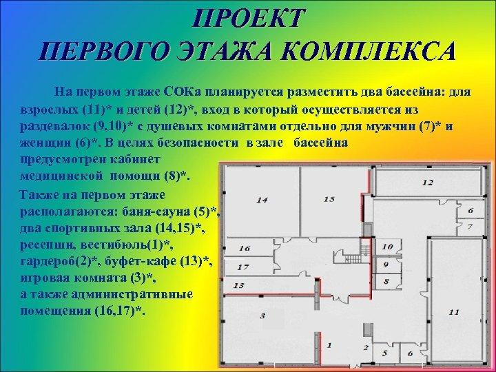 ПРОЕКТ ПЕРВОГО ЭТАЖА КОМПЛЕКСА На первом этаже СОКа планируется разместить два бассейна: для взрослых