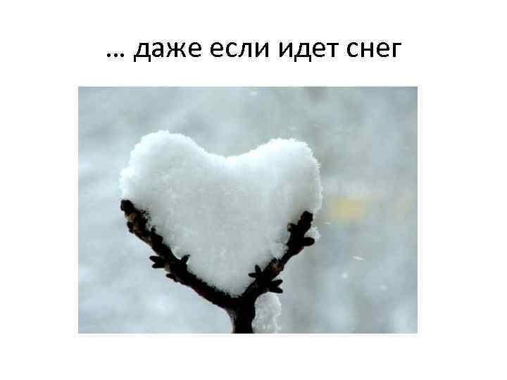 … даже если идет снег