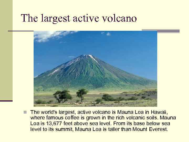 The largest active volcano n The world's largest, active volcano is Mauna Loa in