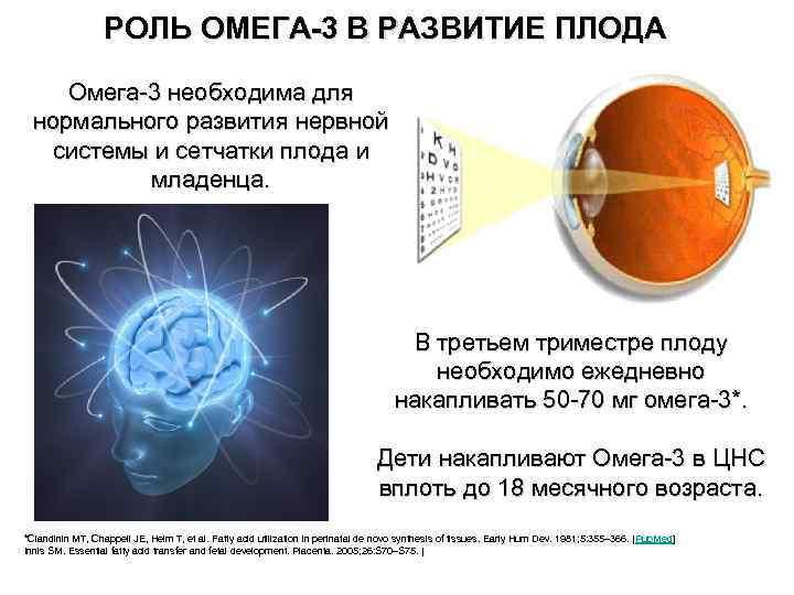 РОЛЬ ОМЕГА-3 В РАЗВИТИЕ ПЛОДА Омега-3 необходима для нормального развития нервной системы и сетчатки