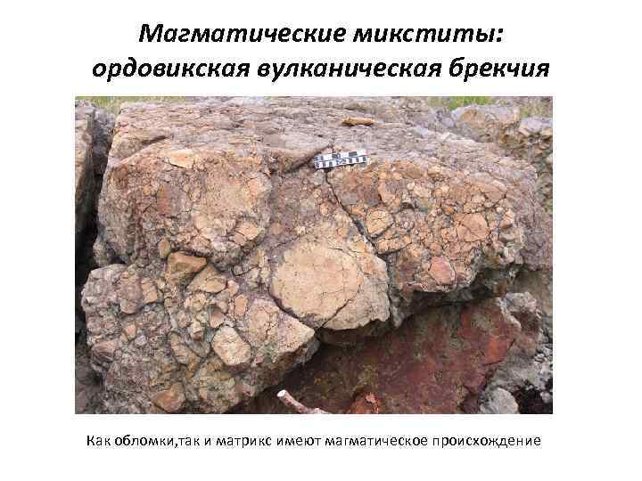 Магматические микститы: ордовикская вулканическая брекчия Как обломки, так и матрикс имеют магматическое происхождение