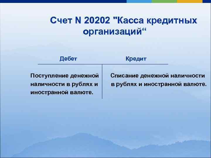 Счет N 20202