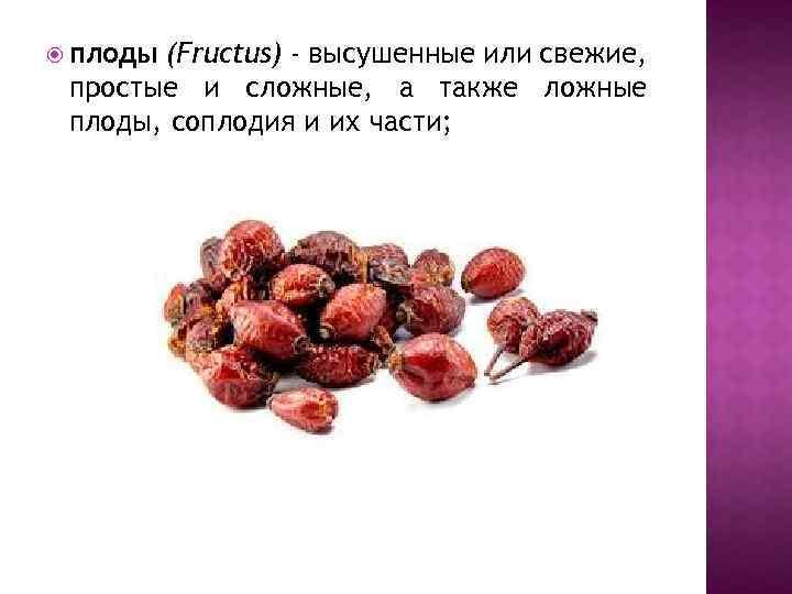 плоды (Fructus) - высушенные или свежие, простые и сложные, а также ложные плоды,