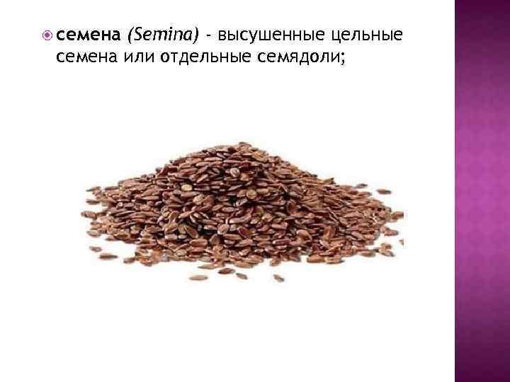 семена (Semina) - высушенные цельные семена или отдельные семядоли;