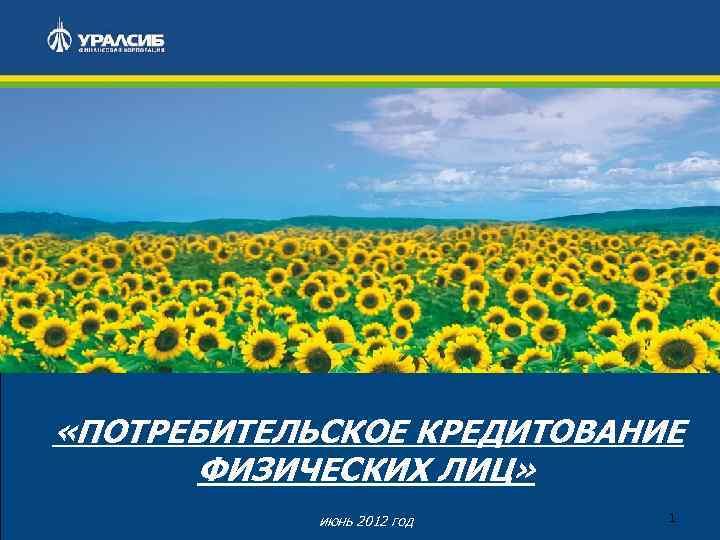 «ПОТРЕБИТЕЛЬСКОЕ КРЕДИТОВАНИЕ ФИЗИЧЕСКИХ ЛИЦ» июнь 2012 год 1