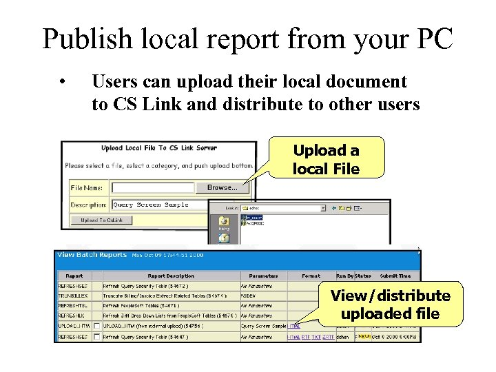 Publish local report from your PC • Users can upload their local document to