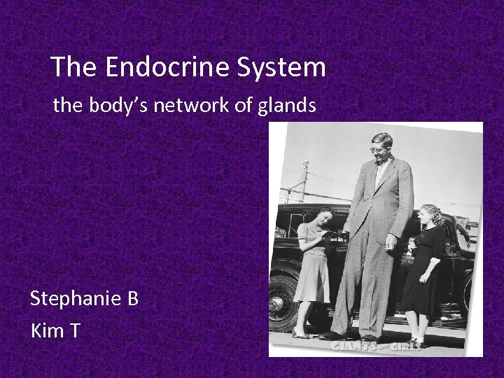 The Endocrine System the body's network of glands Stephanie B Kim T