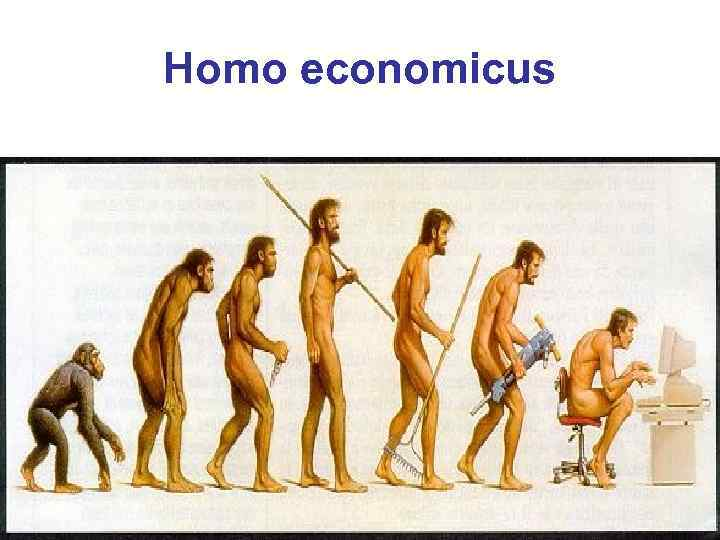 homo islamicus Homo islamicus versus homo sapiens or educate yourself :: reader comments at daniel pipes.