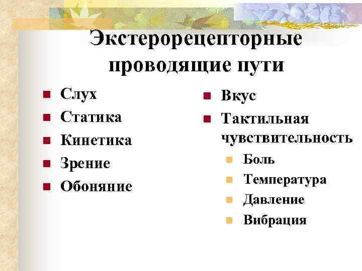Экстерорецепторные проводящие пути n n n Слух Статика Кинетика Зрение Обоняние n n Вкус