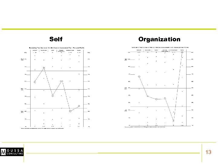 Self Organization 13
