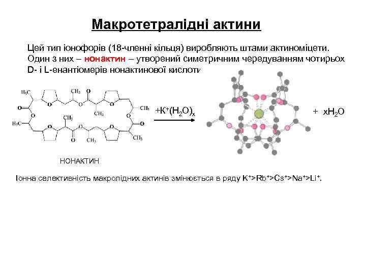 Макротетралідні актини Цей тип іонофорів (18 -членні кільця) виробляють штами актиноміцети. Один з них