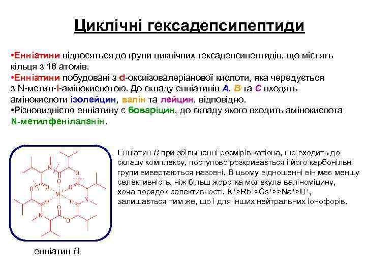 Циклічні гексадепсипептиди • Енніатини відносяться до групи циклічних гексадепсипептидів, що містять кільця з 18