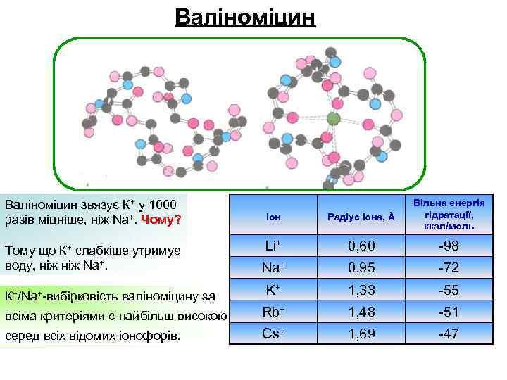 Валіноміцин Іон Радіус іона, Å Вільна енергія гідратації, ккал/моль Li+ 0, 60 -98 Na+