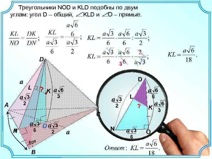 Треугольники NOD и KLD подобны по двум углам: угол D – общий, KLD
