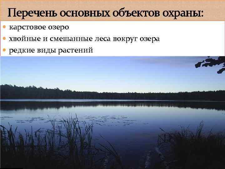 Перечень основных объектов охраны: карстовое озеро хвойные и смешанные леса вокруг озера редкие