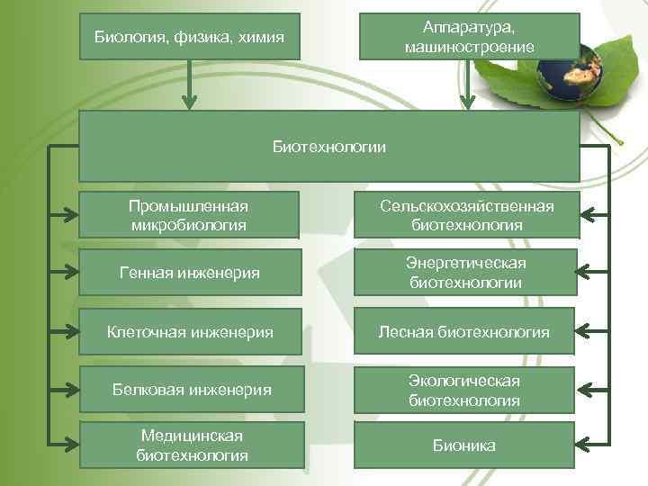 Аппаратура, машиностроение Биология, физика, химия Биотехнологии Промышленная микробиология Сельскохозяйственная биотехнология Генная инженерия Энергетическая биотехнологии