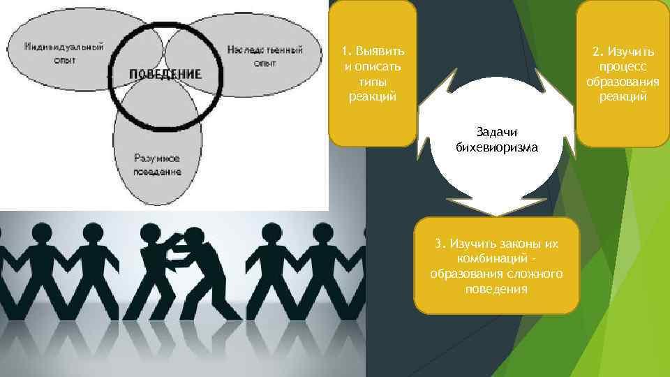 1. Выявить и описать типы реакций 2. Изучить процесс образования реакций Задачи бихевиоризма 3.