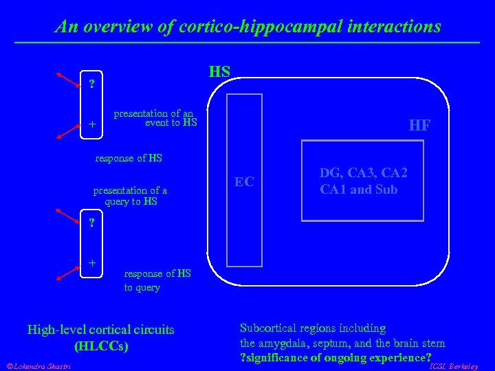 An overview of cortico-hippocampal interactions HS ? + presentation of an event to HS