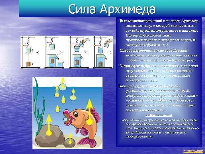 Сила Архимеда Выталкивающей силой или силой Архимеда называют силу, с которой жидкость или газ