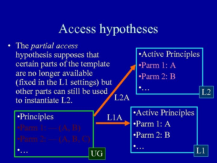 Access hypotheses • The partial access hypothesis supposes that certain parts of the template