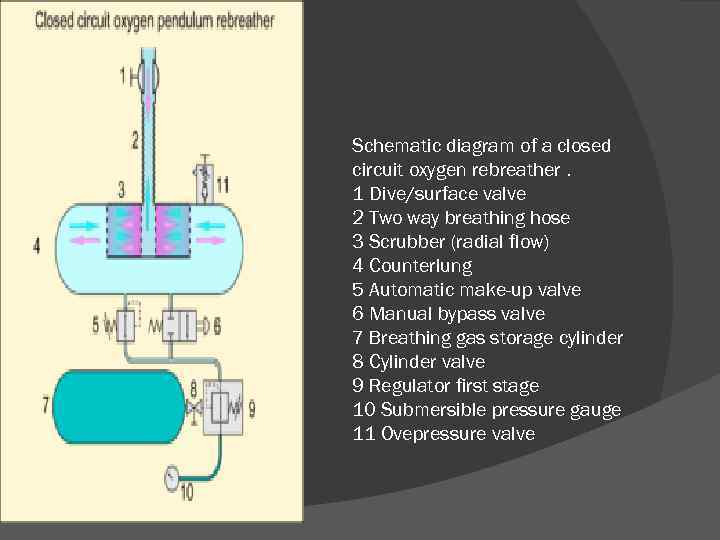 Schematic diagram of a closed circuit oxygen rebreather. 1 Dive/surface valve 2 Two way