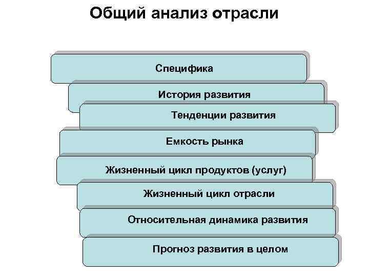 Общий анализ отрасли Специфика История развития Тенденции развития Емкость рынка Жизненный цикл продуктов (услуг)
