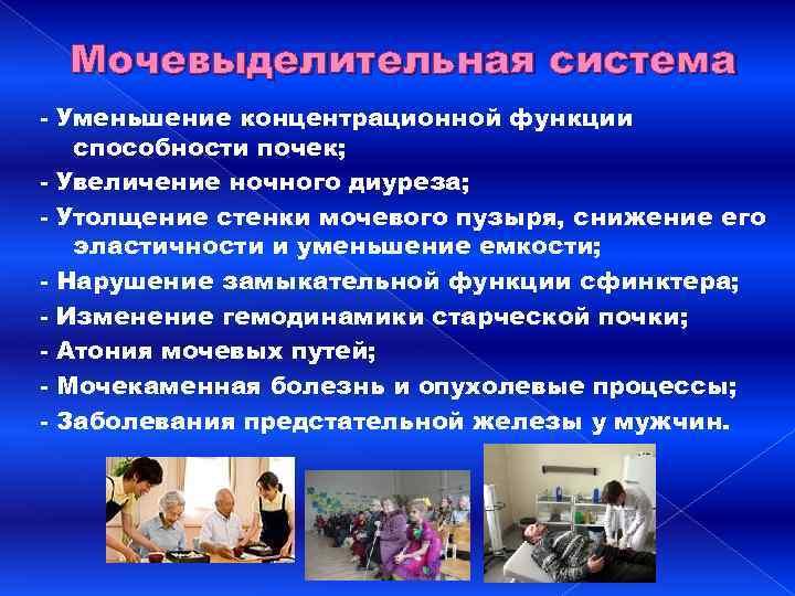 Мочевыделительная система - Уменьшение концентрационной функции способности почек; - Увеличение ночного диуреза; - Утолщение