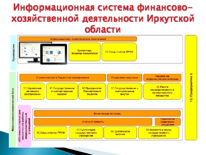 Информационная система финансовохозяйственной деятельности Иркутской области