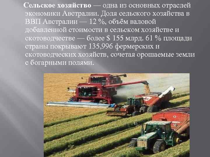 Сельское хозяйство — одна из основных отраслей экономики Австралии. Доля сельского хозяйства в ВВП