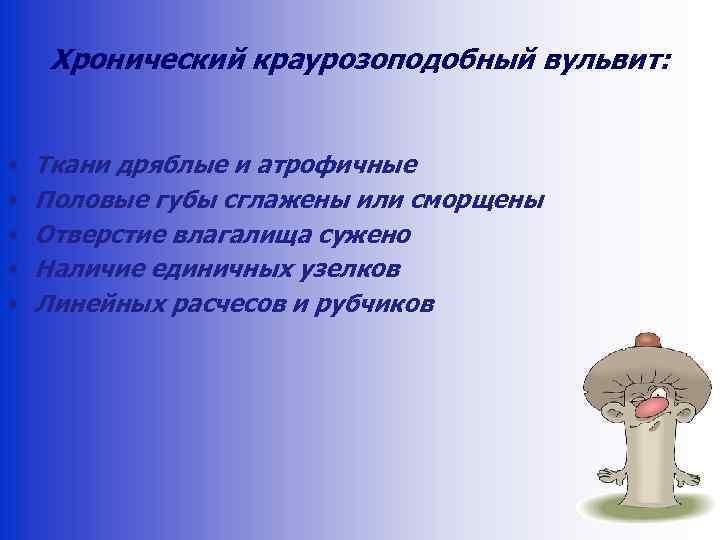 Хронический краурозоподобный вульвит: • • • Ткани дряблые и атрофичные Половые губы сглажены или
