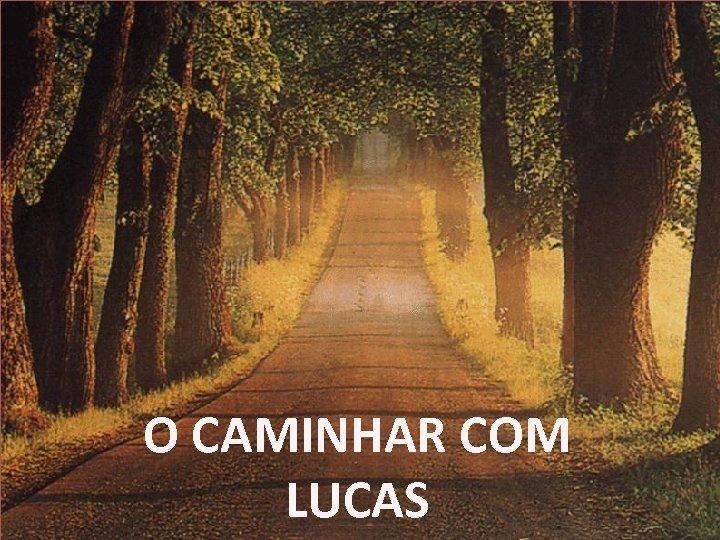 O CAMINHAR COM LUCAS