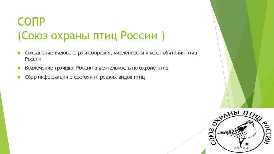 СОПР (Союз охраны птиц России ) Сохранение видового разнообразия, численности и мест обитания птиц