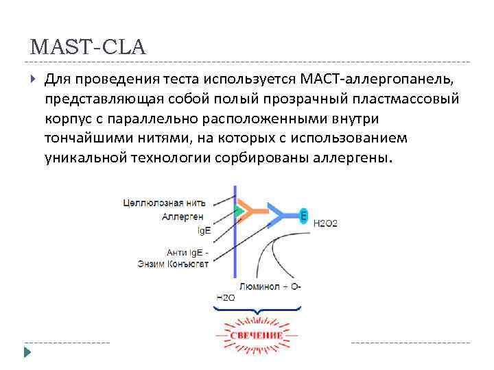 MAST-CLA Для проведения теста используется МAСT-аллергопанель, представляющая собой полый прозрачный пластмассовый корпус с параллельно