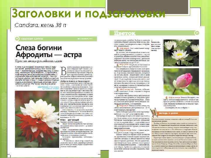 Заголовки и подзаголовки Candara, кегль 38 п