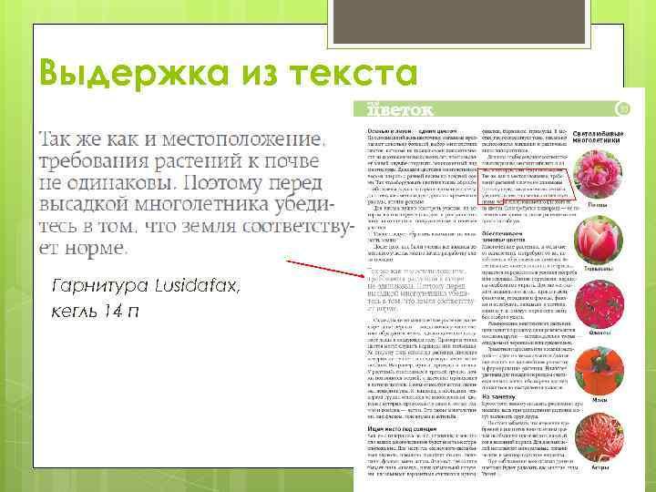 Выдержка из текста Гарнитура Lusidafax, кегль 14 п