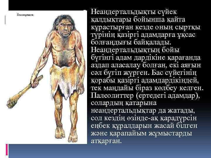 Неандертальдықты сүйек қалдықтары бойынша қайта кұрастырған кезде оның сыртқы түрінің қазіргі адамдарға ұқсас