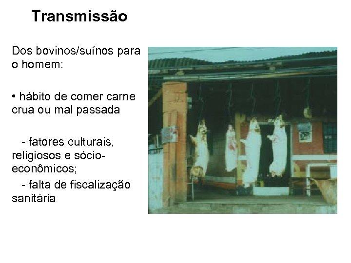 Transmissão Dos bovinos/suínos para o homem: • hábito de comer carne crua ou mal