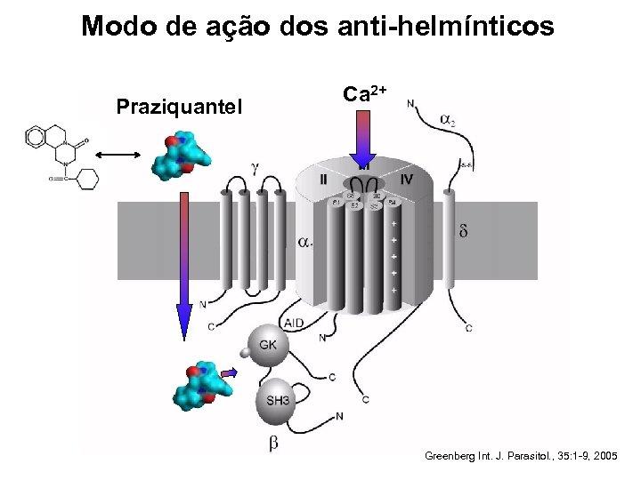 Modo de ação dos anti-helmínticos Praziquantel Ca 2+ Greenberg Int. J. Parasitol. , 35: