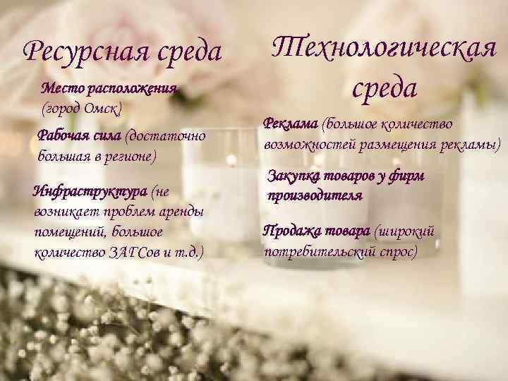 Ресурсная среда Место расположения (город Омск) Рабочая сила (достаточно большая в регионе) Инфраструктура (не