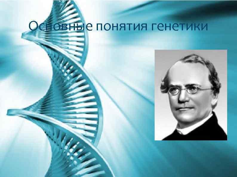 Основные понятия генетики