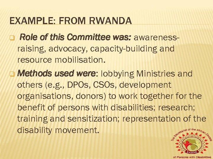 EXAMPLE: FROM RWANDA Role of this Committee was: awarenessraising, advocacy, capacity-building and resource mobilisation.