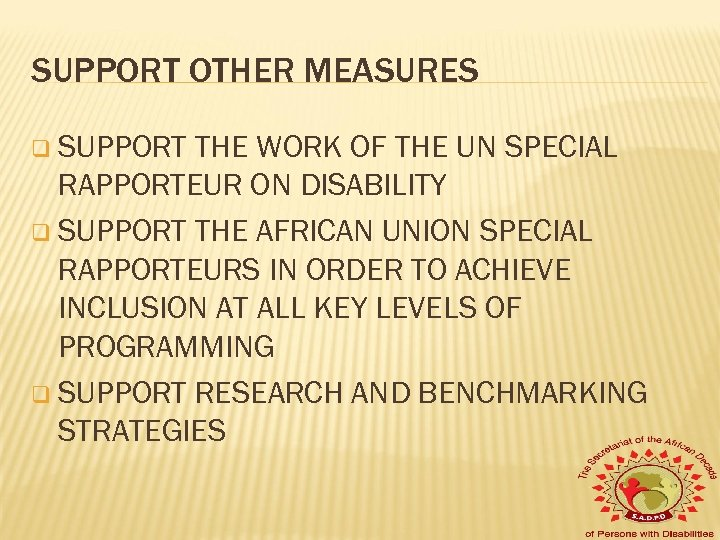 SUPPORT OTHER MEASURES q SUPPORT THE WORK OF THE UN SPECIAL RAPPORTEUR ON DISABILITY