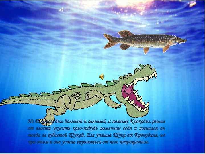 Но Бегемот был большой и сильный, а потому Крокодил решил от злости укусить кого
