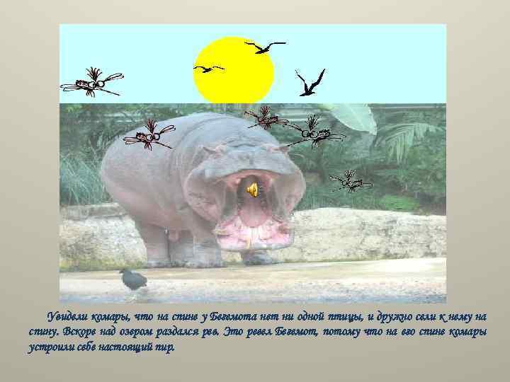 Увидели комары, что на спине у Бегемота нет ни одной птицы, и дружно сели