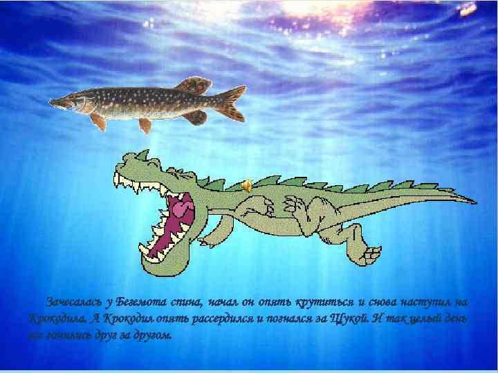 Зачесалась у Бегемота спина, начал он опять крутиться и снова наступил на Крокодила. А