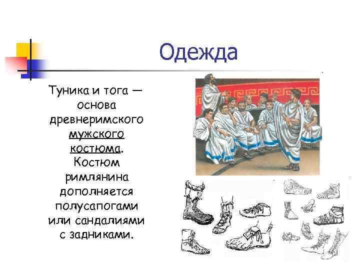 Одежда Туника и тога — основа древнеримского мужского костюма. Костюм римлянина дополняется полусапогами или
