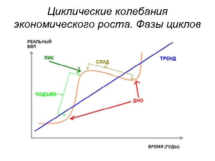 Циклические колебания экономического роста. Фазы циклов