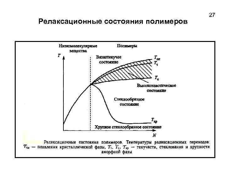 Релаксационные состояния полимеров 27