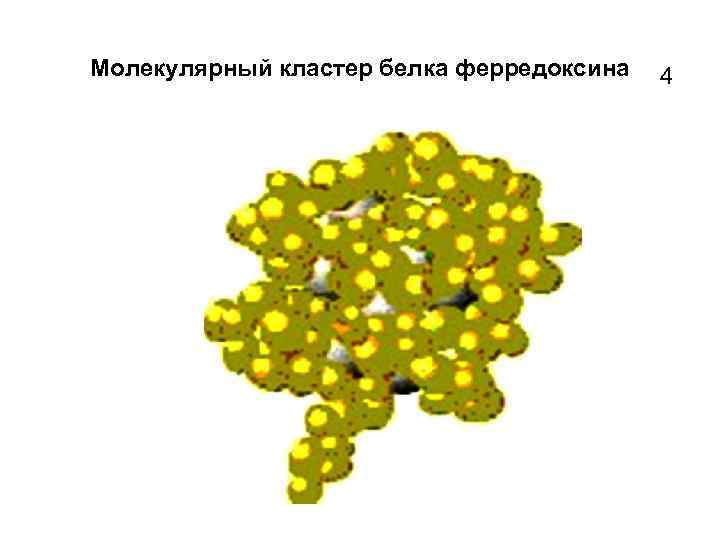Молекулярный кластер белка ферредоксина 4
