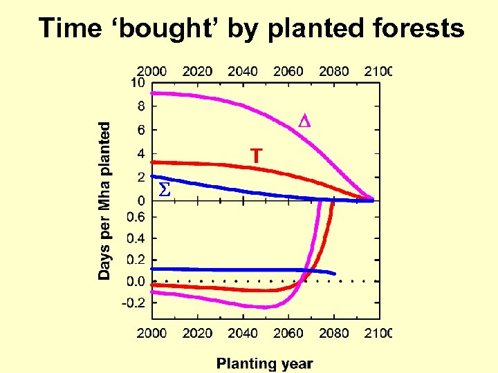 Time 'bought' by planted forests